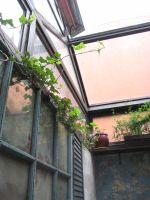 EF_August_Garden_Room_roof