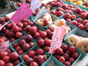 EF_Local_Plums