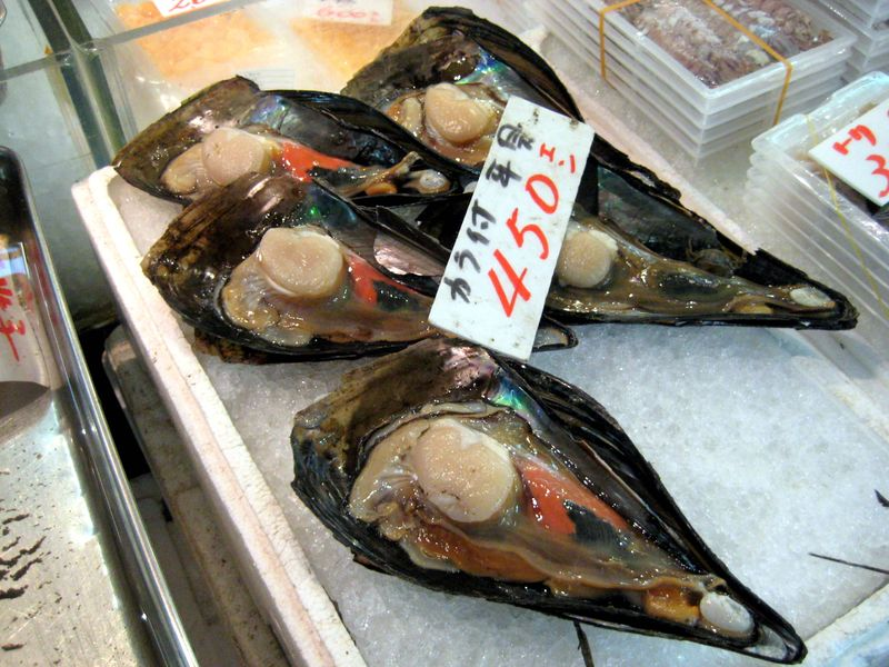 EF Tsukiji Fish Market, Day 1, Giant Mussels
