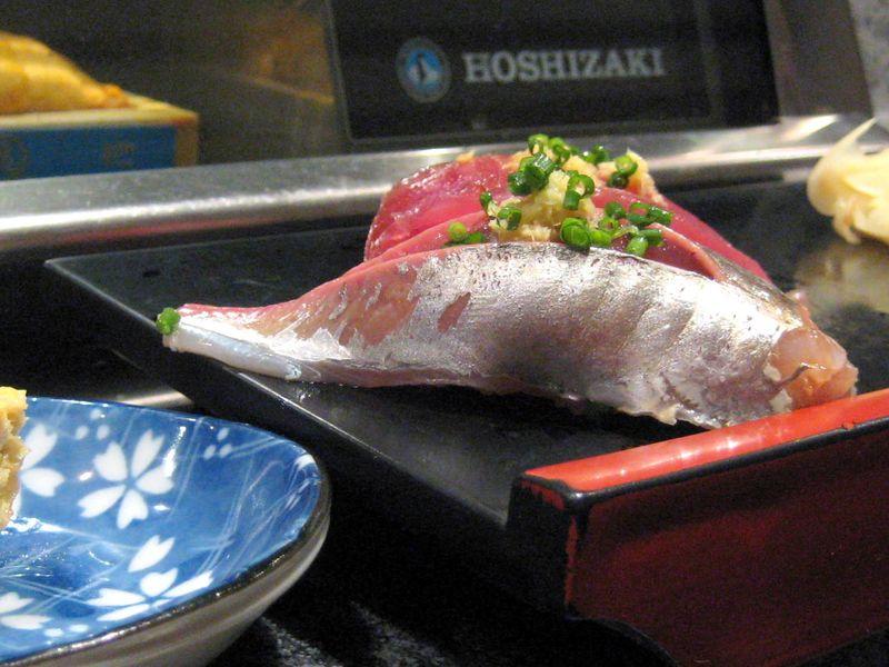 EF Tsukiji Fish Market, Day 1, Mackerel (aji) closeup