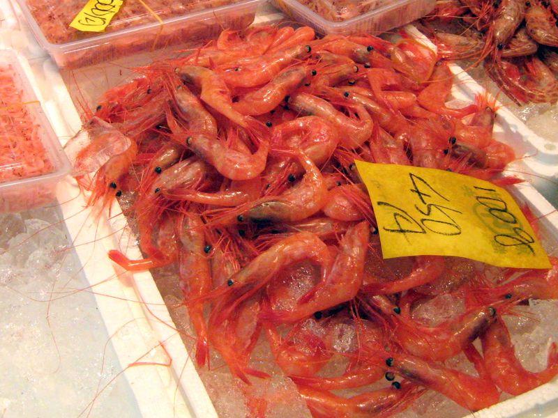 EF Tsukiji Fish Market, Day 1, Whole Amaebi