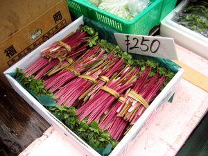 EF Tsukiji Fish Market, Day 1, Mystery Herb