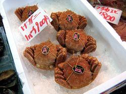 EF Tsukiji Fish Market, Day 1, Hokkaido Crabs