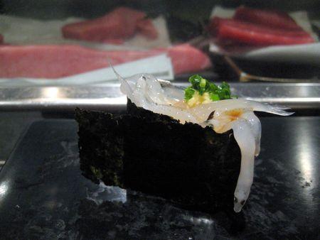 EF Tsukiji Fish Market, Day 1, Nama Shirasu (whitebait) Nigiri